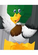 Illustration d'un carnard colvert avec les ailes déployées