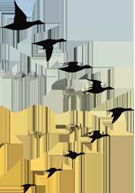9 silhouettes d'oiseaux en vol en formation en V