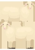 Illustration de deux moutons