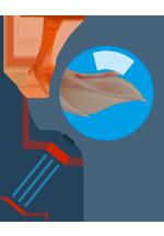 Ilustration d'une loupe orientée sur une patte d'oie