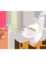 Illustration d'une poule qui tient un ver de terre dans son bec