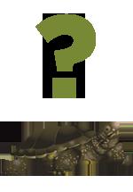 Illustration d'une tortue en dessous d'un point d'interrogation
